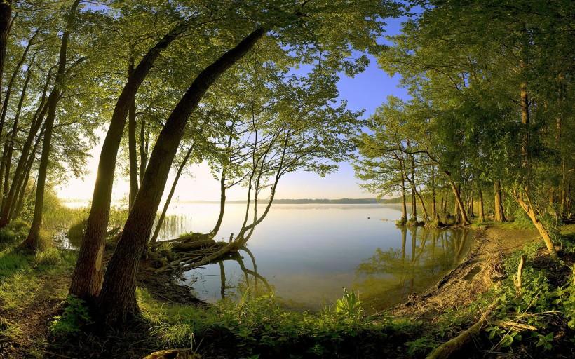beautiful_nature_wallpaper_1920x1200